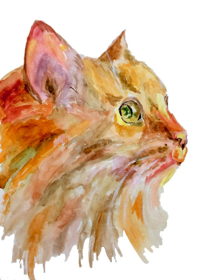 Watercolor portrait of a cat painted on paper vector illustration