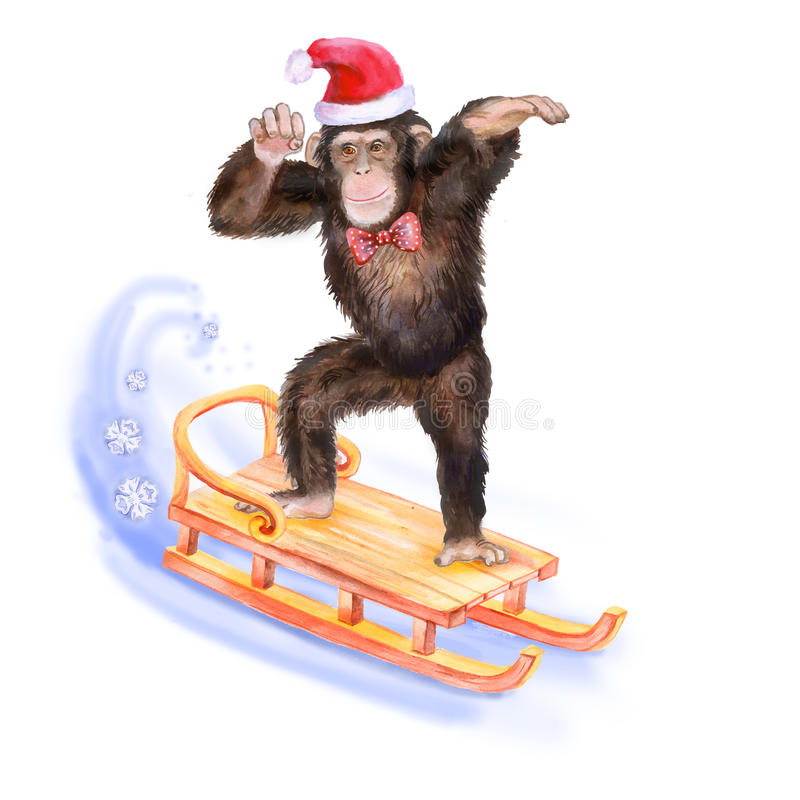 Watercolor portrait of monkey skating on the sledge in hat royalty free illustration
