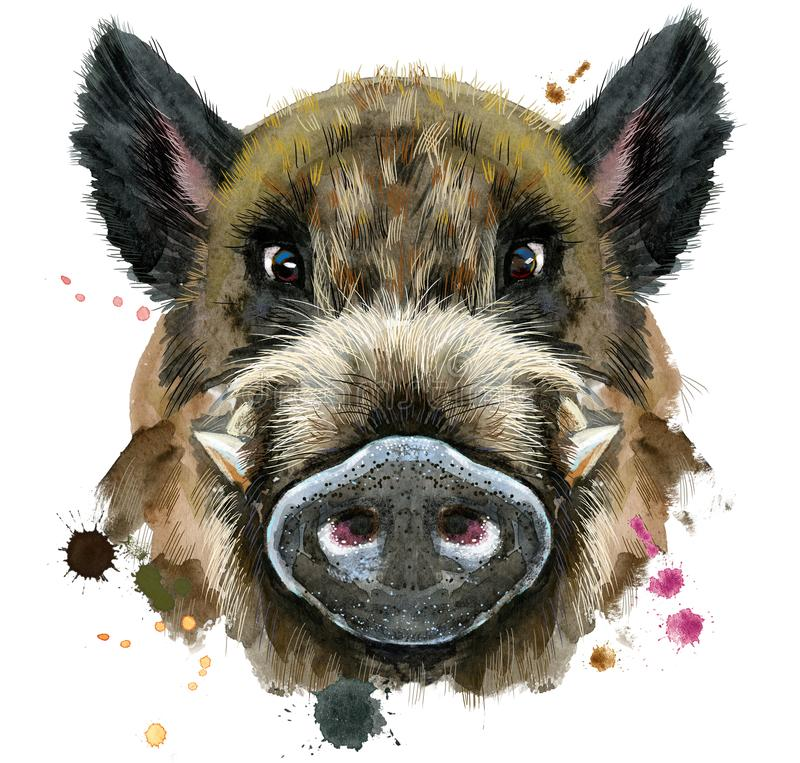 Watercolor portrait of wild boar vector illustration