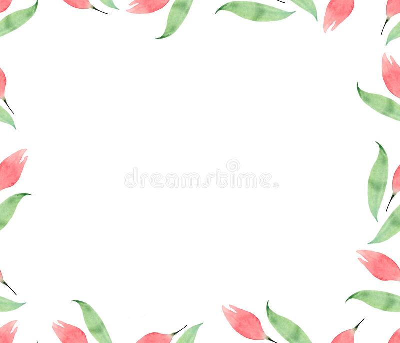 Watercolor postcard with delicate roses and green leaves on a white background. Flower frame for postcards, greetings, invitations royalty free stock images