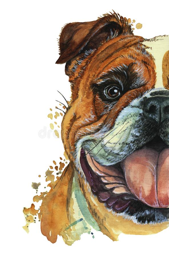 Download Watercolor Printshop Print On The Theme Of Breed Dogs Mammals
