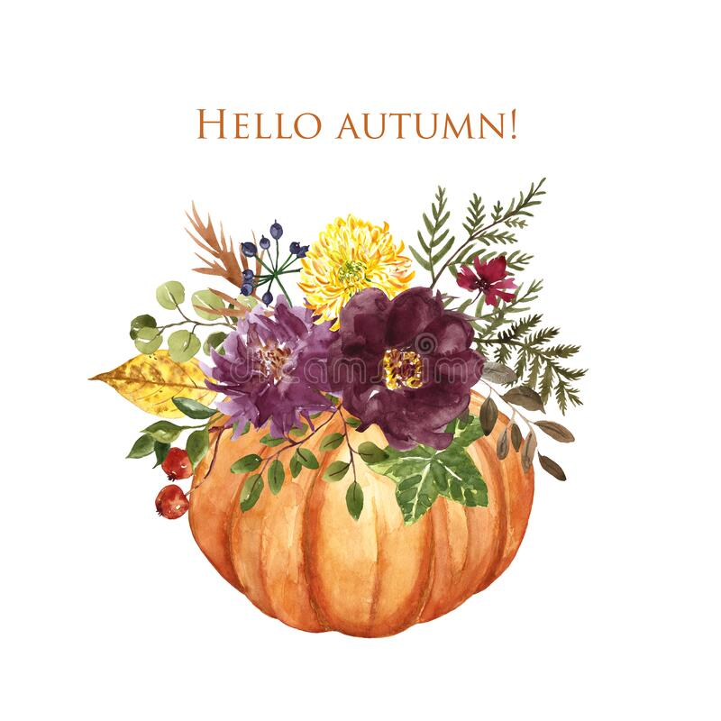 Free Watercolor Pumpkin Arrangement With Fall Flowers And Foliage On White Background. Autumn Floral Bouquet Illustration Stock Photo - 192815230