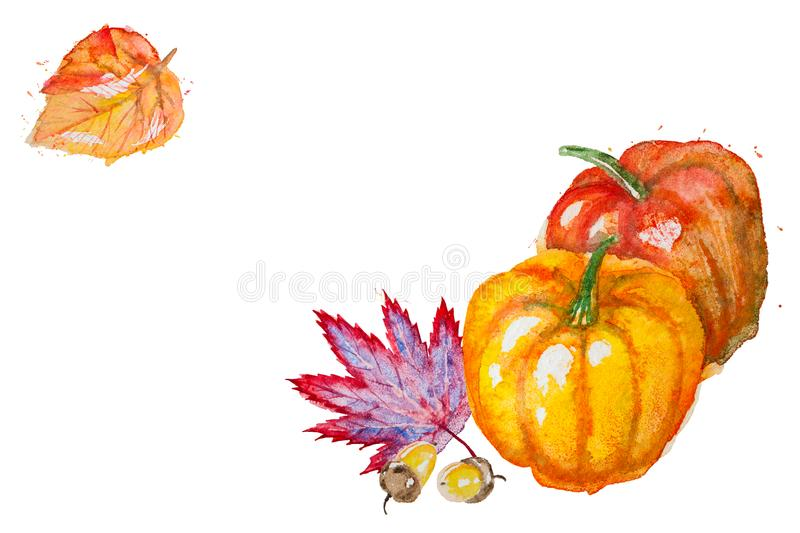 Watercolor pumpkin with autumn leaves. Watercolor hand drawn horizontal composition with autumn leaves,pumpkins and acorns, isolated on the white background with stock illustration