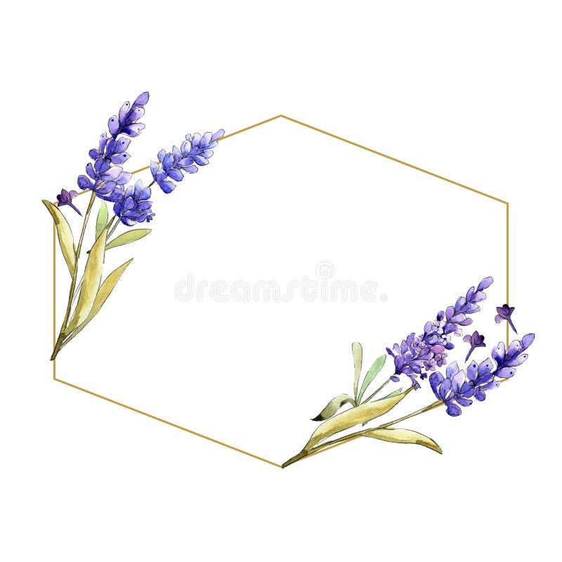 Watercolor purple lavender flowers. Floral botanical flower. Frame border ornament square. royalty free illustration