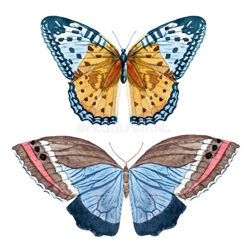 Watercolor raster butterflies royalty free illustration