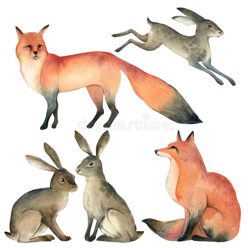 Watercolor realistic forest animal sketch. red fox, rabbit, hare vector illustration