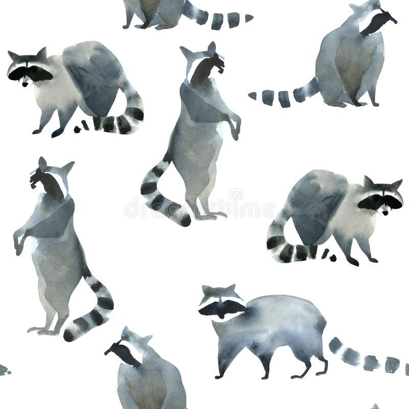 Watercolor realistic forest animal sketch. Seamles pattern about many of raccoons. Watercolor illustartion of gray wild raccoon on white background. Realistic stock illustration
