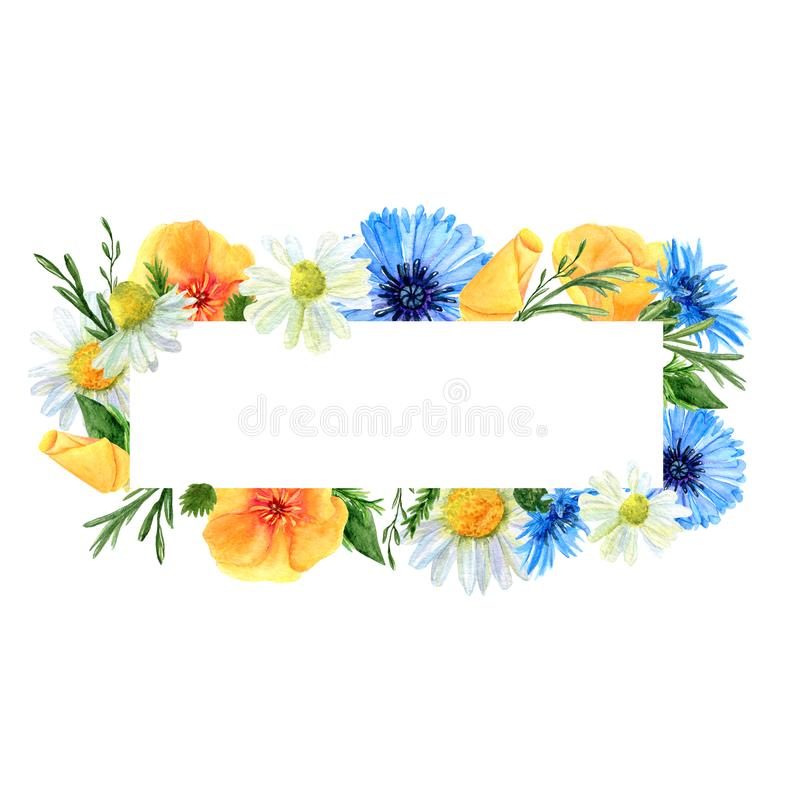 Watercolor rectangular frame with summer meadow flowers and herbs. Background with floral pattern and  place for text. Design for wedding, invitations or cards stock illustration