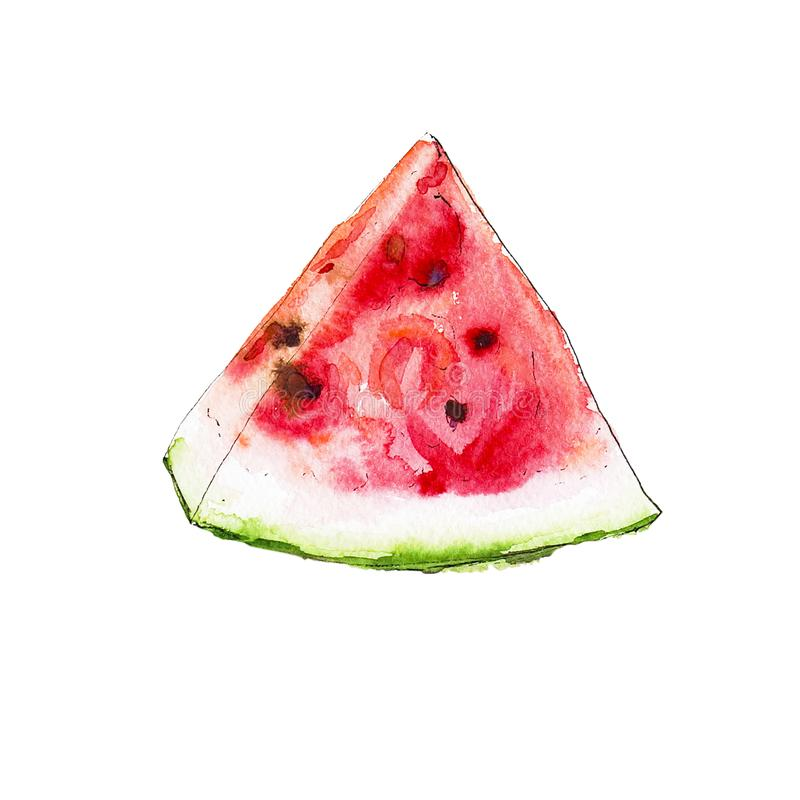 Watercolor red juicy watermelon slice. royalty free illustration