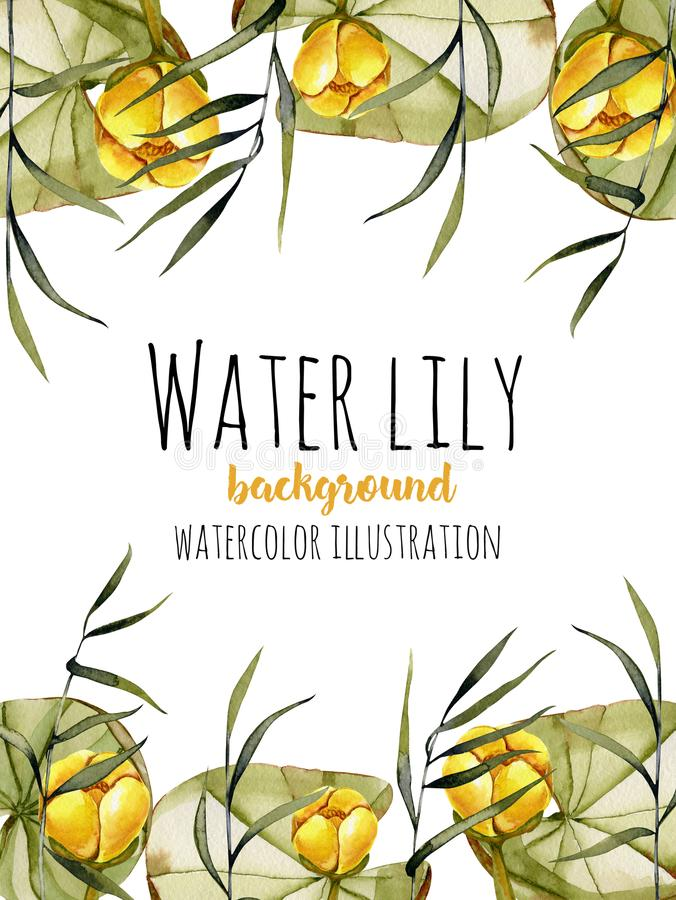 Watercolor Reeds And Yellow Water Lily Background, Greeting Card ...