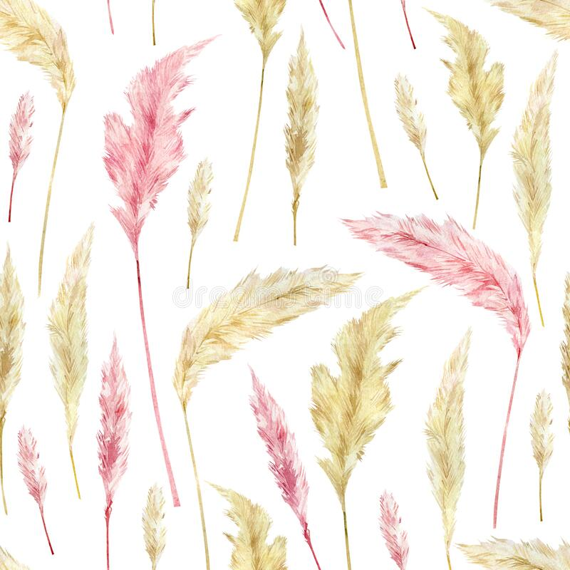 Free Watercolor Retro Botanical Pattern With Dried Flowers And Pampas Grass. Boho Wild Floral Stock Photo - 174027410