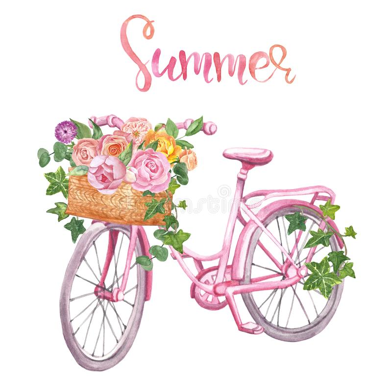 Watercolor floral bicycle, isolated. Romantic pink bike, basket and flowers on white background. Wedding design, cards royalty free stock photography