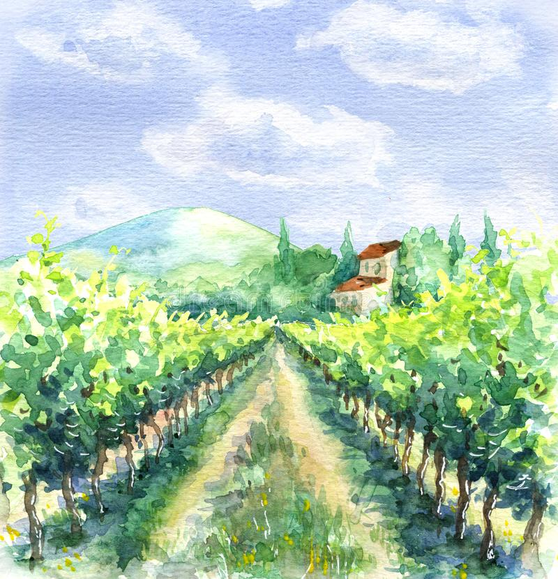 Watercolor Rural Scene with Vineyard stock illustration