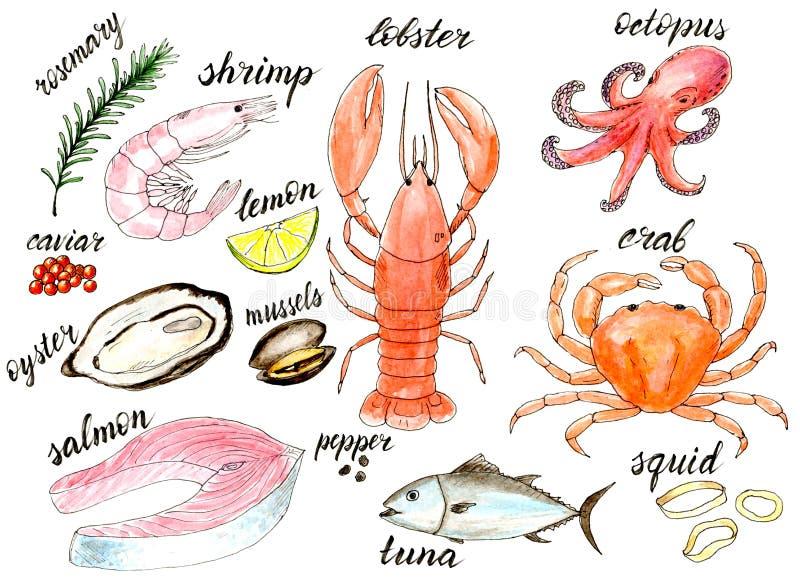 Watercolor sea food menu illustration set stock illustration