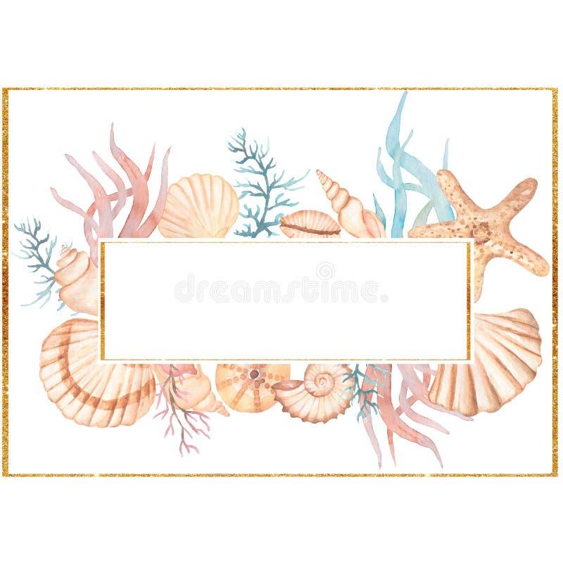 Free Watercolor Sea Shells Frame Clip Art. Coral  Flower Bouquet. Ocean Coral Wreath, Sea Reef Frame, Summer Beach Arrangements Stock Images - 209787854