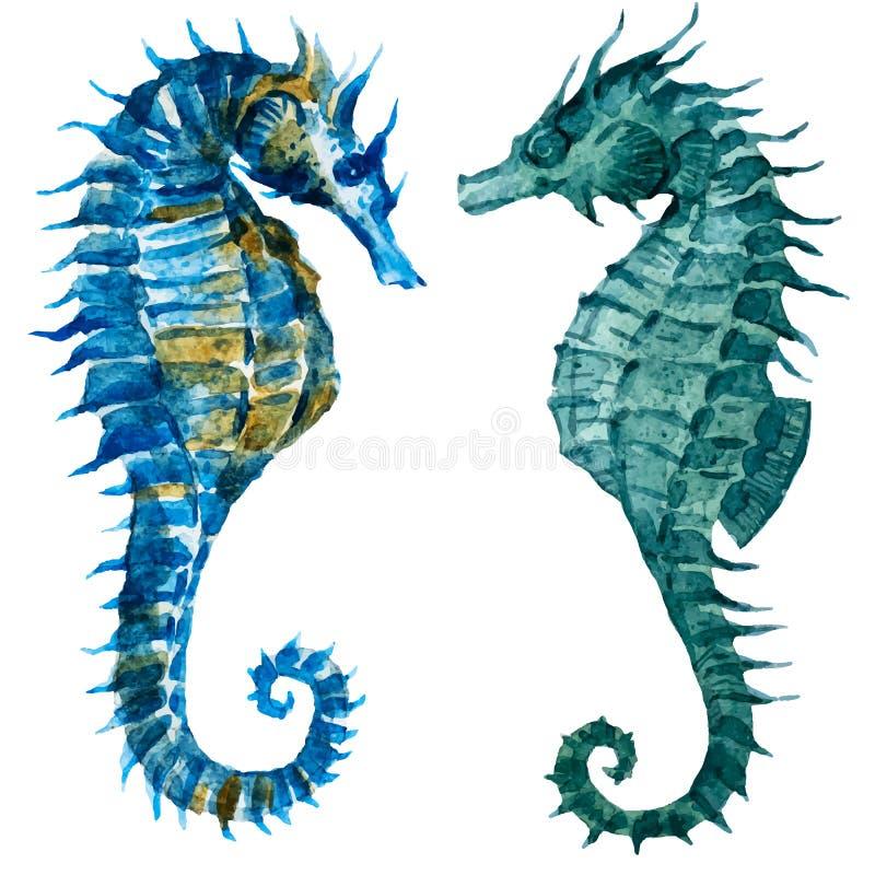 Watercolor seahorses. Beautiful vector image with nice watercolor seahorses