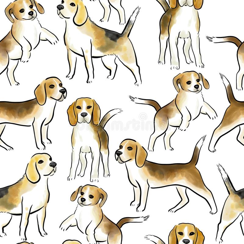 Beagle dog seamless. Watercolor seamless background with beagle dogs breed stock illustration