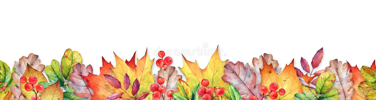 Seamless border with watercolor autumn leaves and berries stock illustration