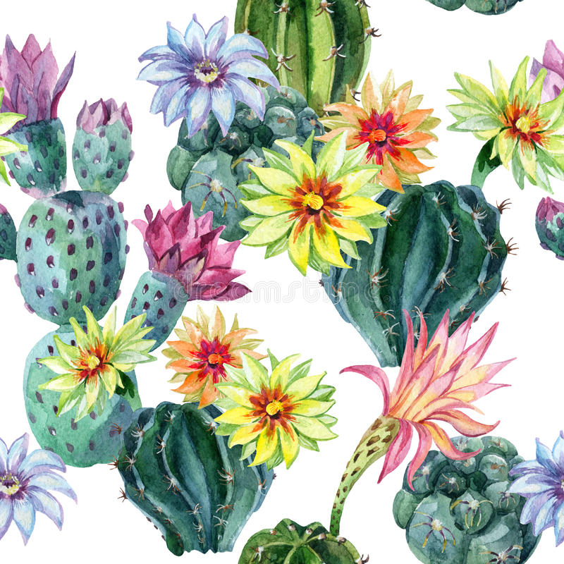 Watercolor seamless cactus pattern royalty free illustration