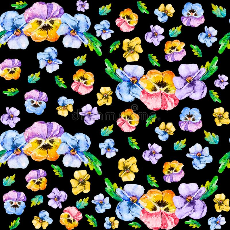 Watercolor seamless floral pattern of blooming color violets pansies flowers. Head and bouquet of viola as wave on black royalty free illustration