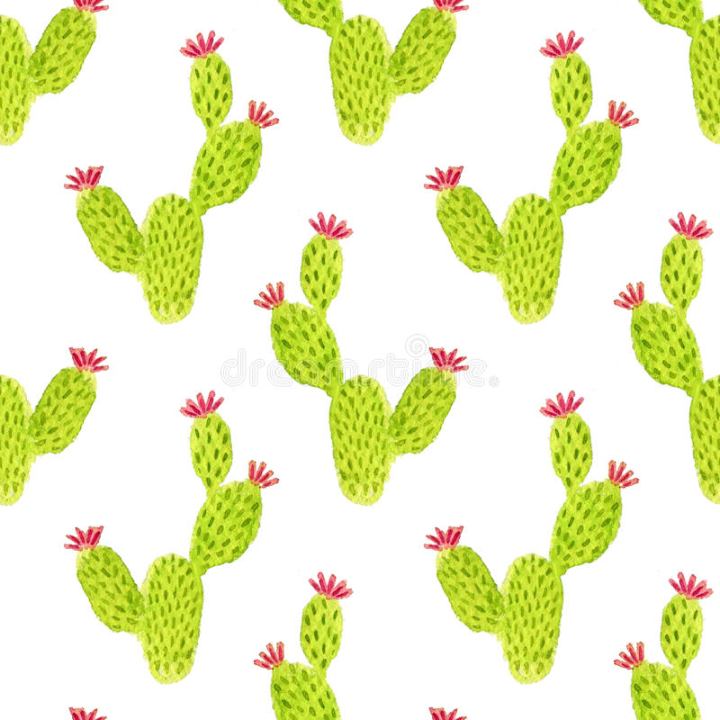 Watercolor seamless opuntia cactus pattern. Hand paint background. Can be used for wrapping paper and fabric design. vector illustration