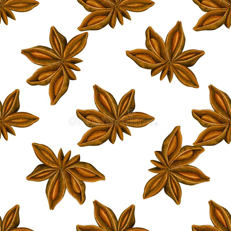 Watercolor seamless pattern with anise. Hand drawn botanic design. Template for a banner, poster, notebook, invitation stock photos