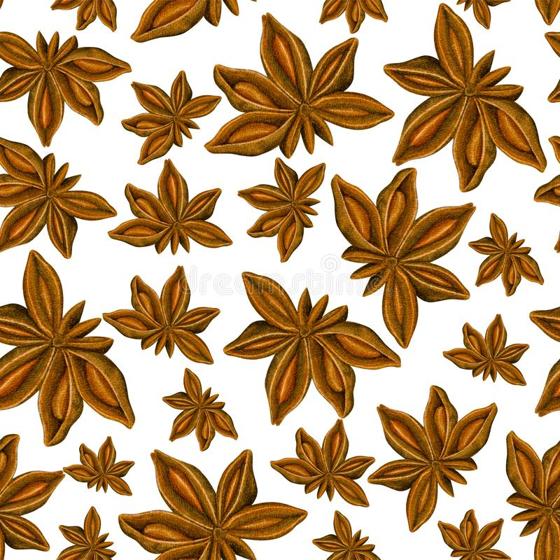Watercolor seamless pattern with anise. Hand drawn botanic design. Template for a banner, poster, notebook, invitation. Illustration for your design royalty free stock photo