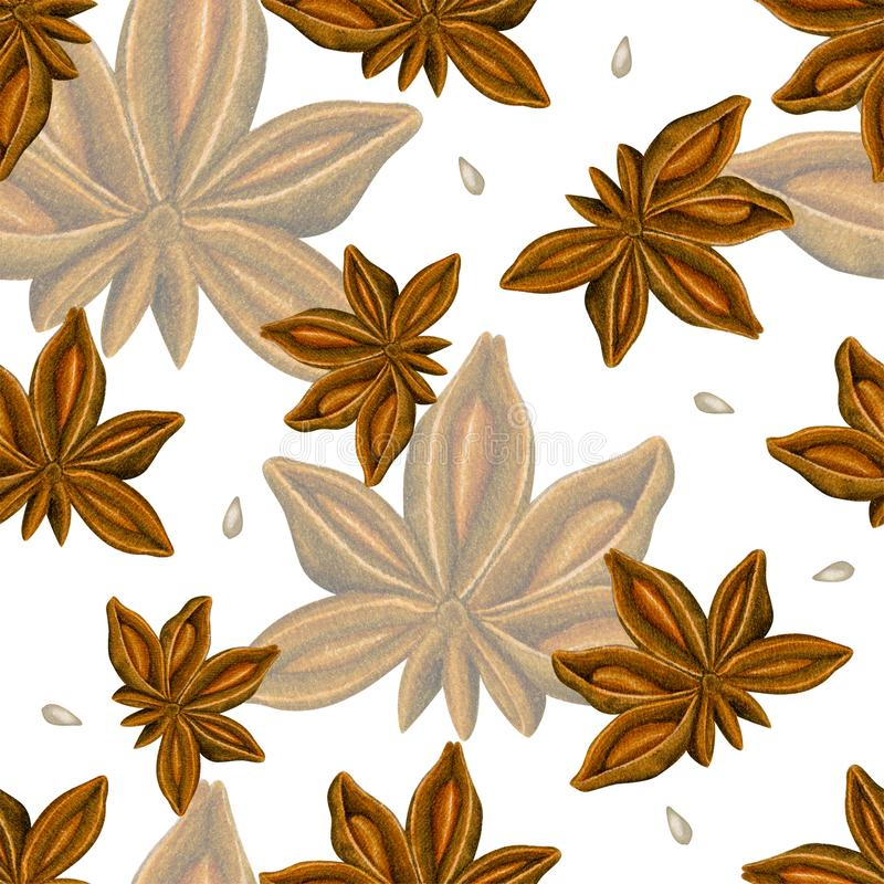 Watercolor seamless pattern with anise. Hand drawn botanic design. Template for a banner, poster, notebook, invitation. Illustration for your design stock photo
