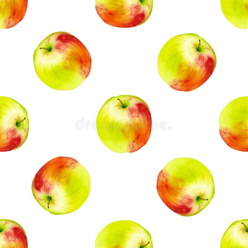 Watercolor seamless pattern with apples. Hand drawn botanic design. Template for a banner, poster, notebook, invitation stock image