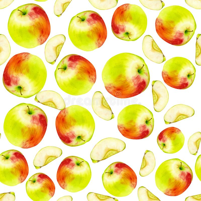 Watercolor seamless pattern with apples. Hand drawn botanic design. Template for a banner, poster, notebook, invitation. Illustration for your design vector illustration
