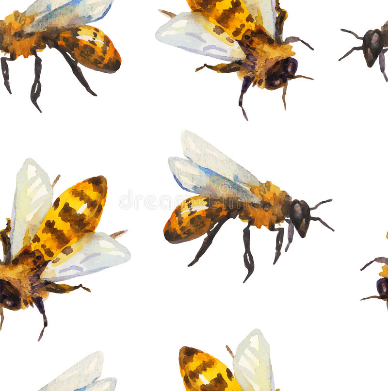 Watercolor seamless pattern with bee stock illustration