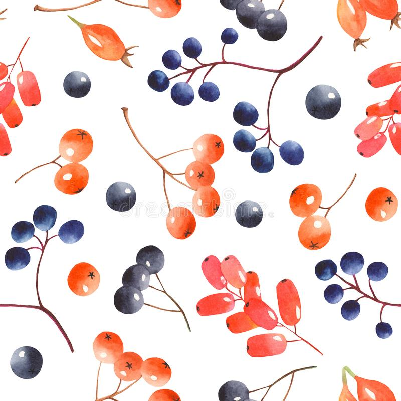 Watercolor seamless pattern with berries. royalty free stock photo