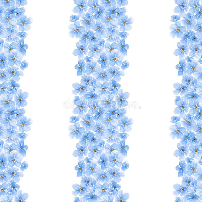 Watercolor seamless pattern with blue forget me not flowers. royalty free illustration