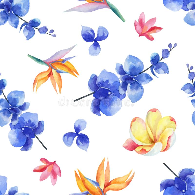 Watercolor seamless pattern of bright exotic flowers isolated on white background. royalty free illustration
