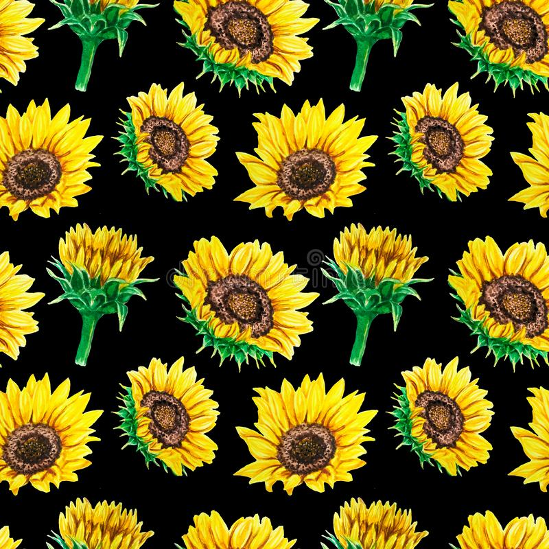 Watercolor seamless pattern with bright sunflowers. Perfect for fabric, wallpaper, scrapbooking textile design. Watercolor seamless pattern with bright royalty free stock photos