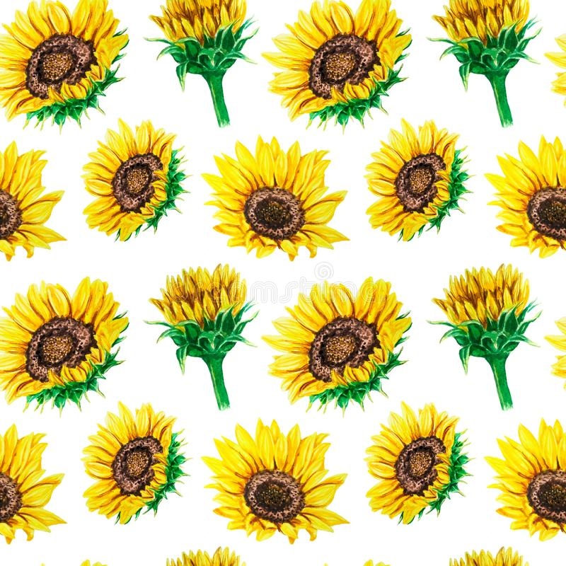 Watercolor seamless pattern with bright sunflowers. Perfect for fabric, wallpaper, scrapbooking textile design. Watercolor seamless pattern with bright stock photos