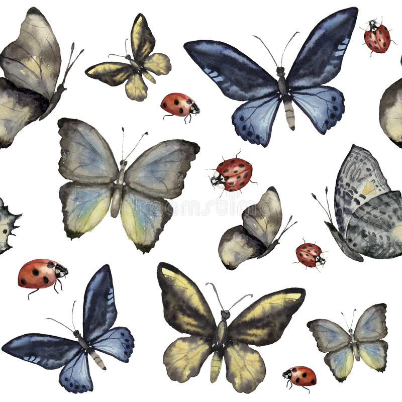 Watercolor seamless pattern with butterfly and ladybug. Hand painted insect ornament isolated on white background stock illustration