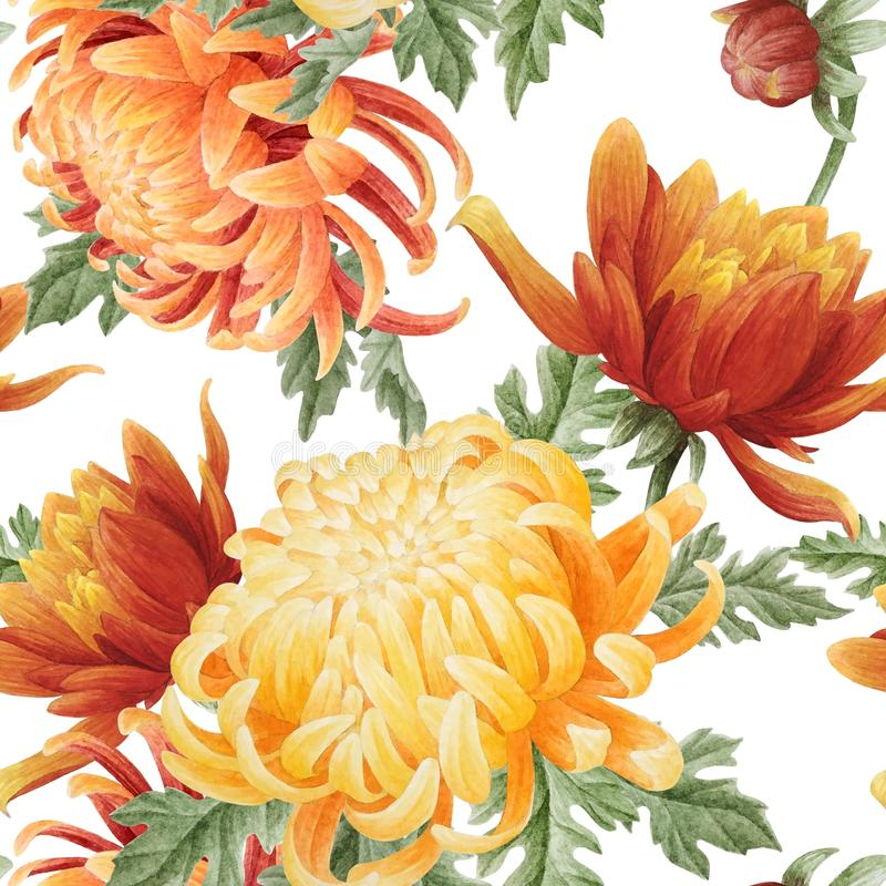 Watercolor seamless pattern with chrysanthemum royalty free stock photo