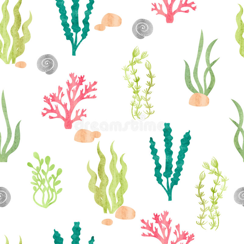 Watercolor seamless pattern with corals, seaweeds, shells and stones. royalty free illustration