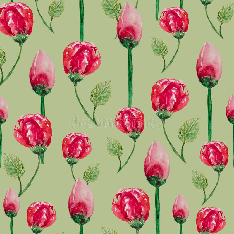 Watercolor seamless pattern of tea roses on a white background stock illustration