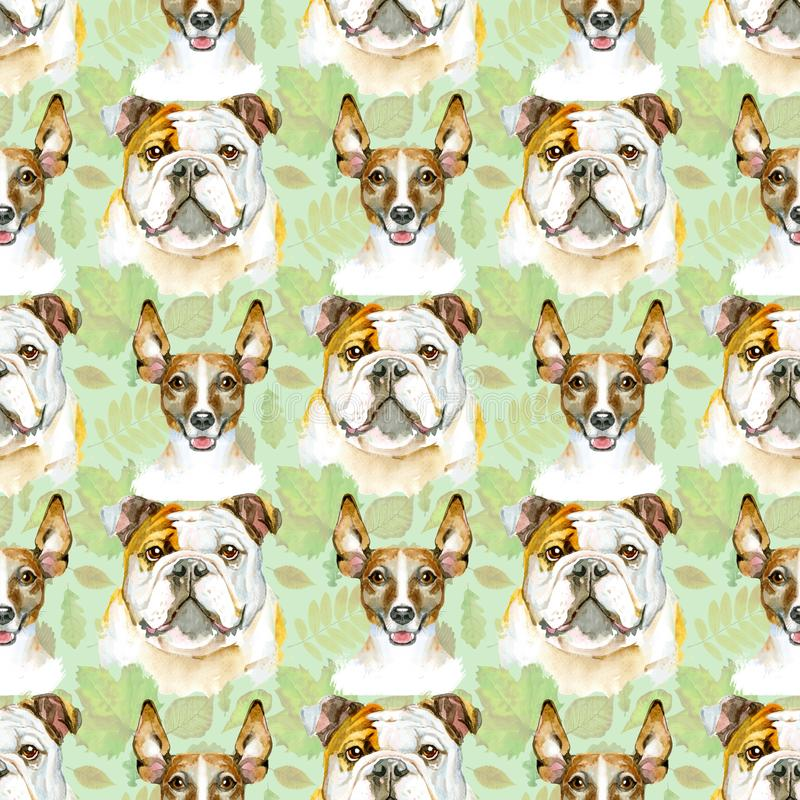 Watercolor seamless pattern of bulldog and jack russell terrier. Pet, puppy background. Animal wallpaper royalty free illustration