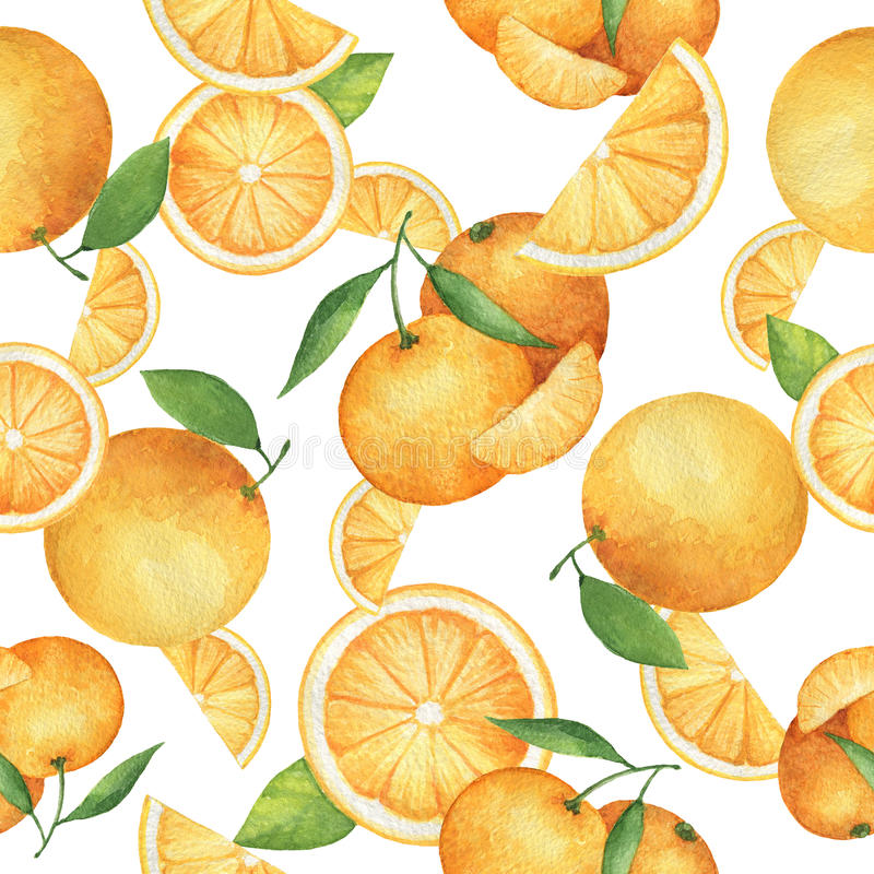 Watercolor seamless pattern with fresh oranges. Watercolor seamless pattern with fresh oranges and tangerines. Hand drawn food texture with fruits on white stock illustration
