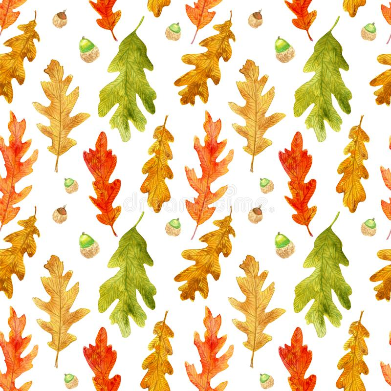 Watercolor autumn oak leaves seamless pattern stock images