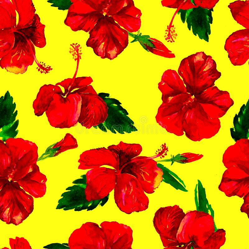 Watercolor Seamless Pattern. Hand Painted Illustration of Tropical Leaves and Flowers. Tropic Summer Motif with Hibiscus Pattern. Hibiscus Pattern. Watercolor royalty free stock photos