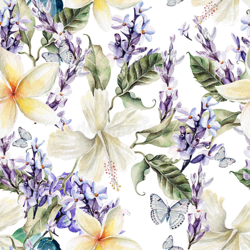 Watercolor seamless pattern with hibiscus flowers and lavender. Illustrations vector illustration