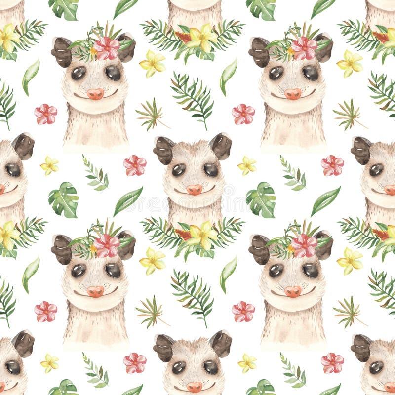 Possum Stock Illustrations – 215 Possum Stock Illustrations