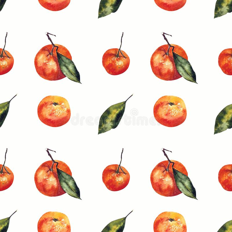 Watercolor seamless pattern with mandarins and leaves. Hand draw stock illustration