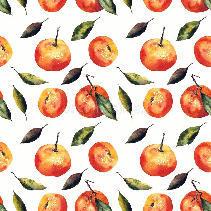 Watercolor seamless pattern with mandarins and leaves. Hand draw vector illustration