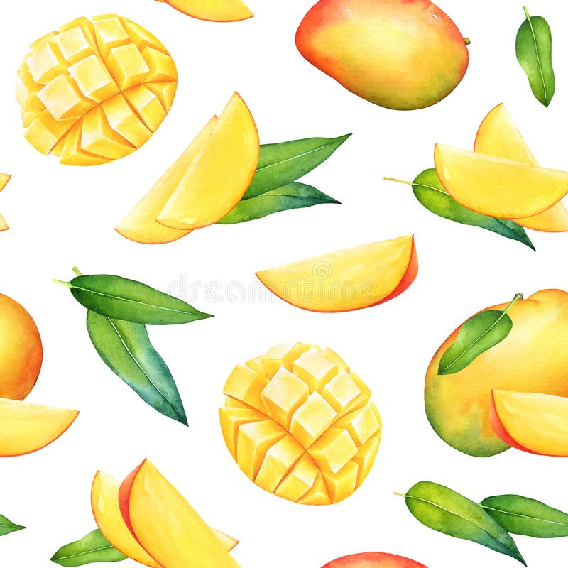 Watercolor seamless pattern with mango fruits and green leaves vector illustration