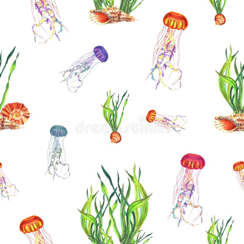 Watercolor seamless pattern of motley medusa and water-plants stock illustration